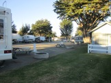 Pismo Coast Village - Campsite