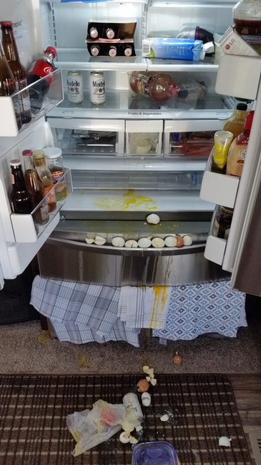 Fridge mess